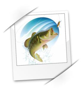 Webseiten und Angebote der Webagentur Aquablues, Medienagentur Aquablues, Dinhard Nähe Winterthur. Gestaltung von Webseiten, Flyer, Logos, Visitenkarten, Fotografie und Suchmaschinen-Optimierung